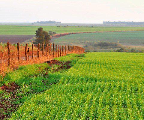 australie climat possibilités agricoles